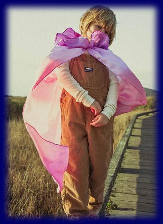 シルク フェアリー マント Blossom ブロッサム ごっご遊び 仮装 おもちゃ