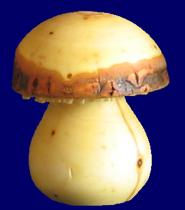 きのこ 6.5cm(No.5000) 皮付き天然木製品