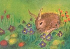 イースターうさぎ Easterhare いろいろなポストカード